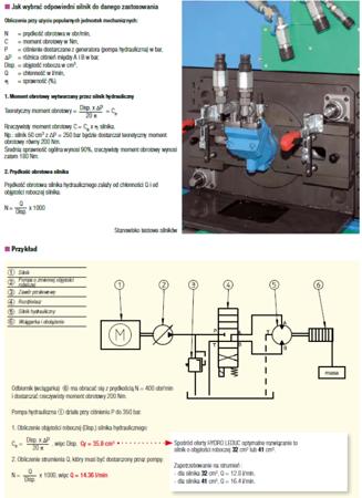 DOSTAWA GRATIS! 01538898 Silnik hydrauliczny tłoczkowy Hydro Leduc (objętość robocza: 50,3 cm³, maksymalna prędkość ciągła: 5000 min-1 /obr/min)